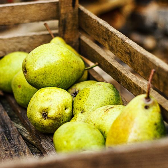 Wir liefern Birnen zu Ihnen vom Großmarkt