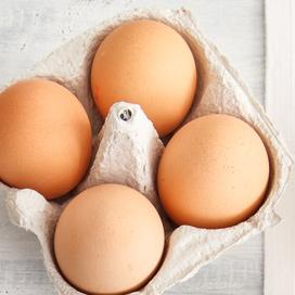 Wie liefern Eier in größeren Mengen im Großraum Düsseldorf